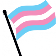 Comparative perspectives on transgender identity laws